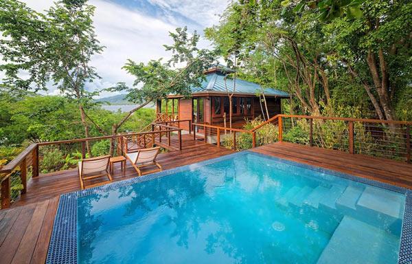 دومینیکا، به عنوان جزیره طبیعت شناخته شده است. جنگل های بارانی و کوهستان های آن مناسب برای کسانی است که به دنبال پیاده روی در طبیعت خالص می باشند.