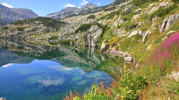 بلغارستان سرزمین کوه های پهناور می باشد و در سراسر بلغارستان رشته کوه وجود دارد.